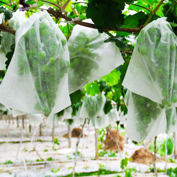 Non Woven Fabrics For Planting Bags