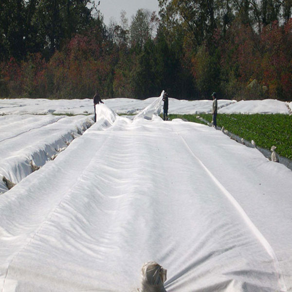 Agricultural Nonwoven Fabrics