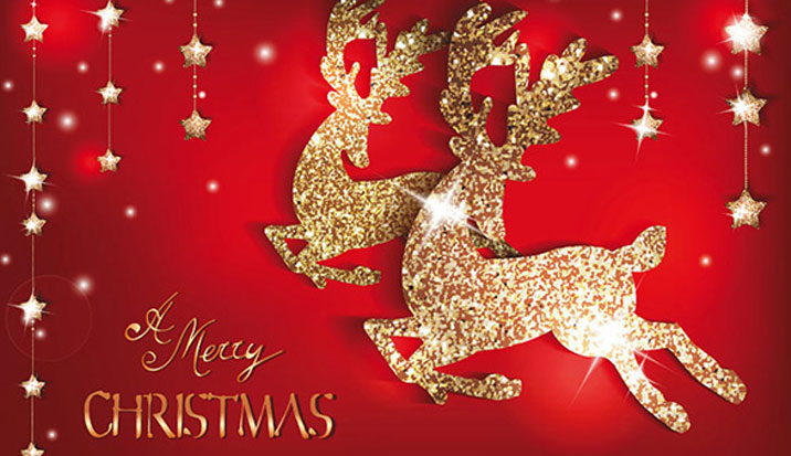 Merry Xmas To You all