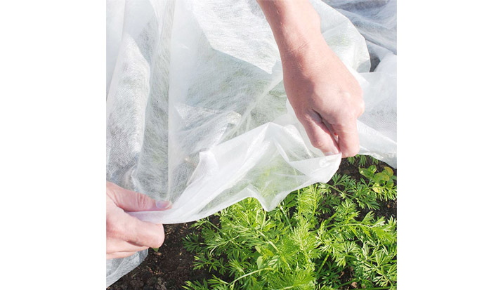 Application of Non-woven Fabric in Vegetable Production